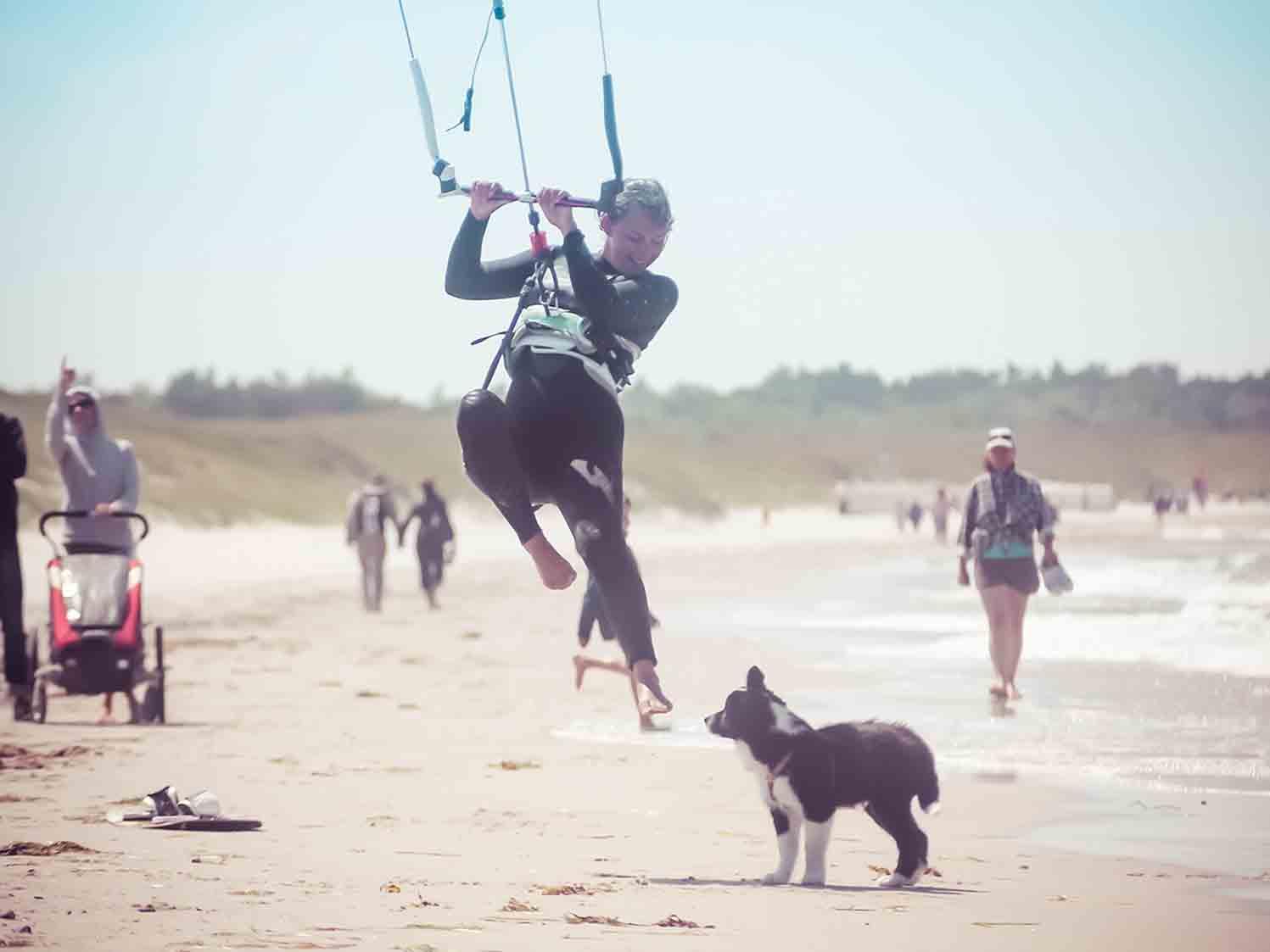 Kiten Ostsee Hund